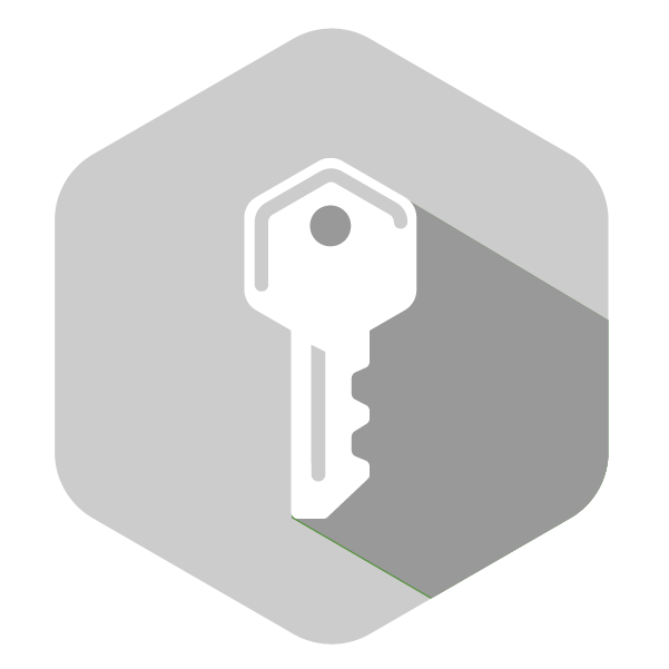 Icon_HEX_Gray-Encryption_Large
