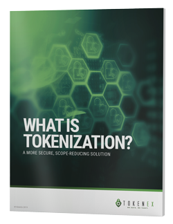 eBook_TokenEx-WhatIsTokenization_d01