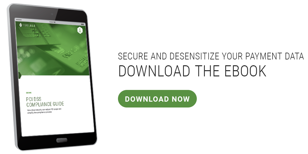 Ipad and Callout-CTA-PCI-Ebook---How-to-Stop-Data-Theft-10-Steps