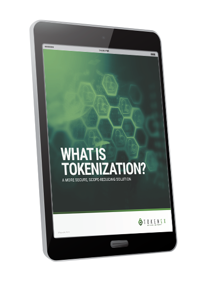 Ipad-CTA-Ebook-TokenEx-What-Is-Tokenization