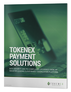 eBook_TokenEx-Payment-Solutions_d01-1